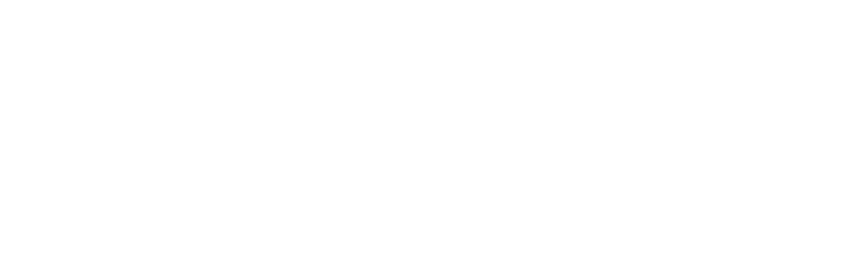 MSI Express, INC